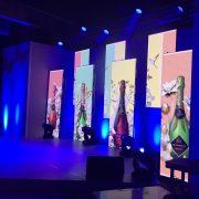 Sanlam Event LED Screen Pannels