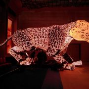 Miss Hong Kong Tiger Artwork LED Screens Digital Display